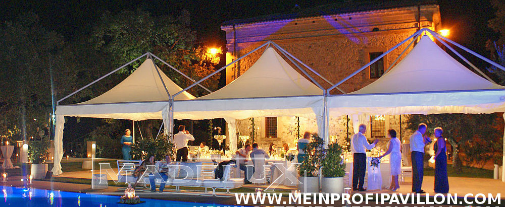 Pavillon Pagodenzelte profizelt Gartenzelt Benutzerdefiniert Personalisiert Carport Terrassendach  Faltpergola PVC PROFI